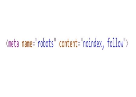 no index robots